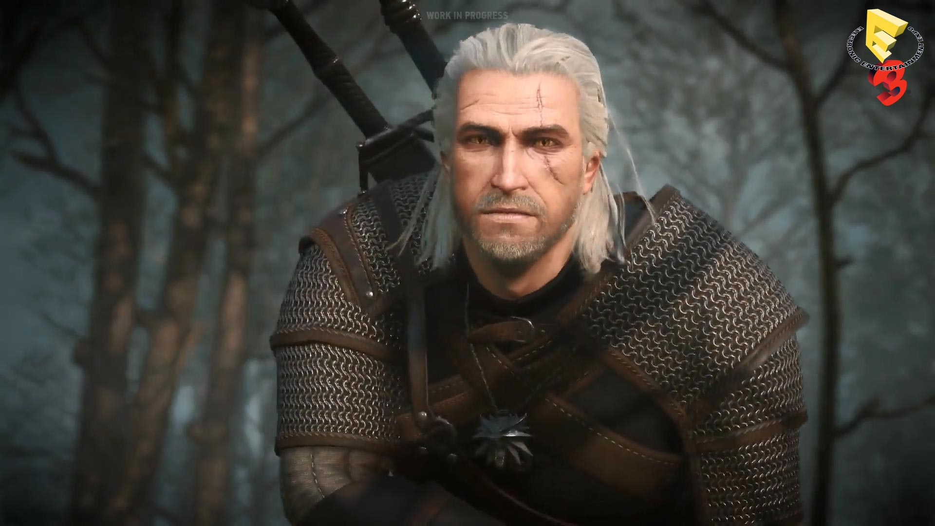 The Witcher 3 Wild Hunt E3 2014