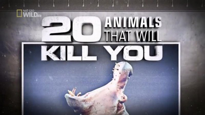 National Geographic 20 Animals That Will Kill You